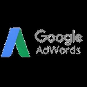 Google AdWords para ONG
